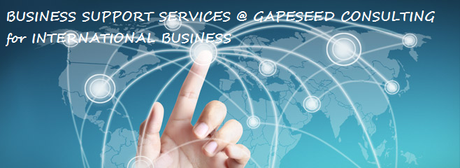 Business Support Services for International Businesses